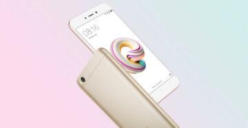 Xiaomi redmi 5 не работают сенсорные кнопки - Ремонт Сяоми